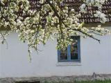 czersk-koscioly-013