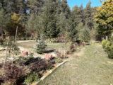 Nasadzenie drzew i krzewów na placu rekreacyjnym w Łukowie