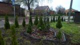 Zazielenienie terenu przy placu zabaw w Starych Prusach
